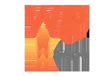 Caching Plugin for WordPress WP Rocket